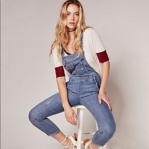 Free People Washed Denim Skinny Leg Overalls